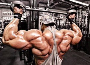 Pump the back muscles