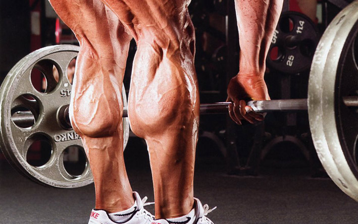 workout for calves at home